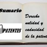 sumario derecho nulidad patente